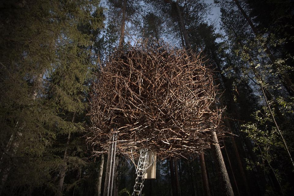 003 900_birds_nest_exterior_2a